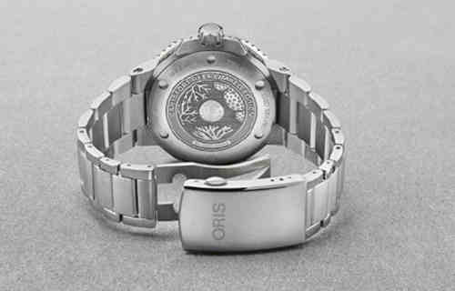 豪利时珊瑚礁限量版腕表 与那款纯金表有何不同?